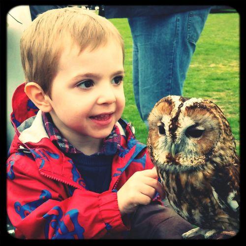 Enjoying time with his owl friend Enjoying Life Check This Out Cheese! Hi!
