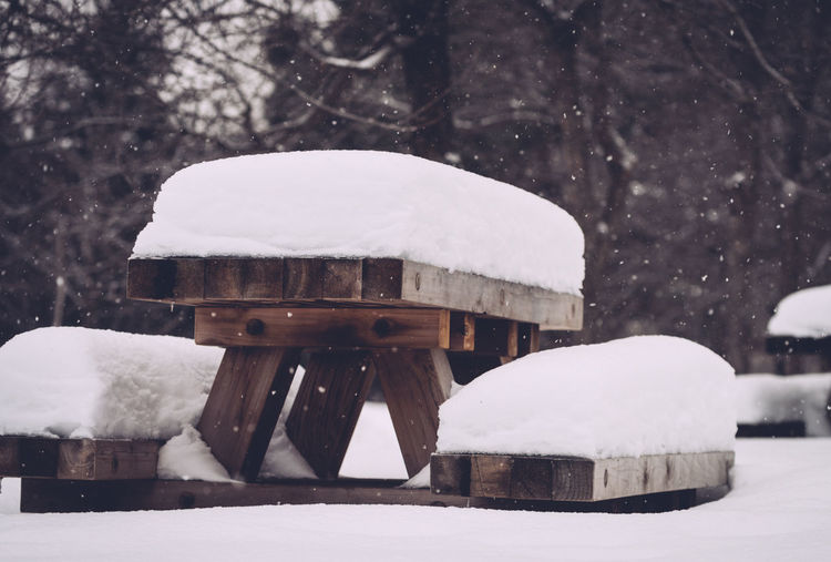Snow Winter Cold Temperature Day Nature White Color Snowing Wood - Material Architecture No People Built Structure Frozen Tree Outdoors Covering Beauty In Nature Table Picnic Table
