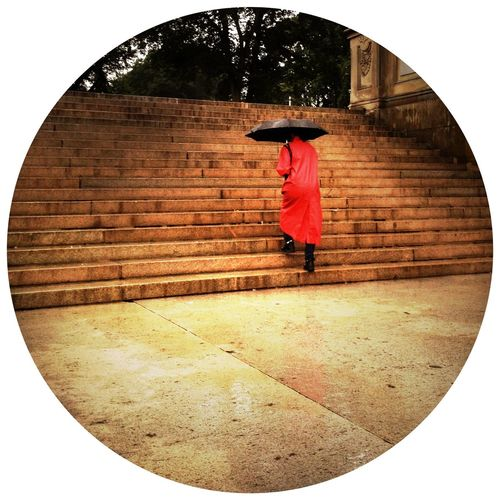 Streetphotography Rain Central Park Steps