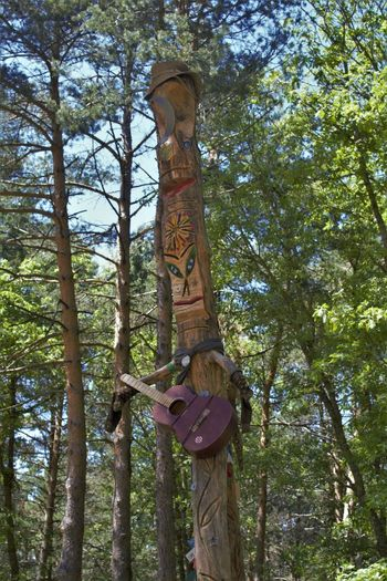 Happy Happy Forest Communication Day Forest Guitar Happyness Nature Outdoors Playing Sculpture Tree
