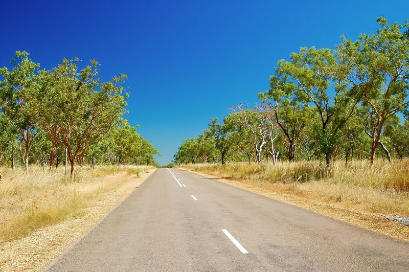 Empty road along trees and against blue sky