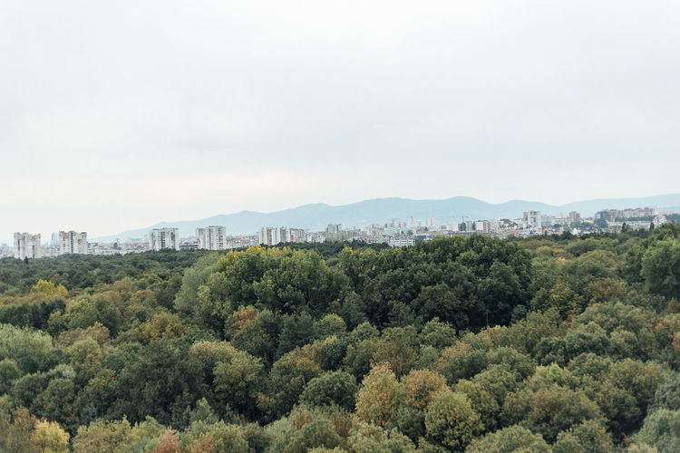 Skyline of Sofia, Bulgaria Tree Plant Sky Growth Building Exterior Nature Built Structure Architecture No People Green Color Beauty In Nature Day Scenics - Nature Landscape Tranquil Scene Outdoors Environment Building City Tranquility Cityscape Skyline Copy Space Mountains Urban Nature