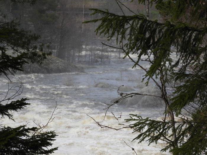 Waterfall area in Älvkarleby. Sweden Waterpower Electricity  Fishing Area Overflowing Stone Tourist Destination Waterfall älvkarleby