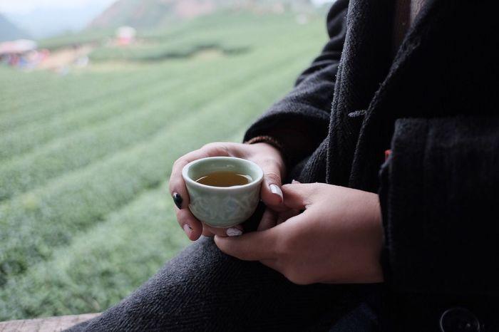 Refreshment Tea Tea - Hot Drink Tea Cup Oolongtea Tea Time TeaCup Hands Teafarm Mộc Châu Mocchauvietnam Mocchau