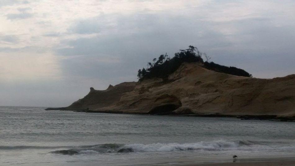 Unedited Unedited Photo Beach Rock Ocean Seagull Sea Waves Peaceful