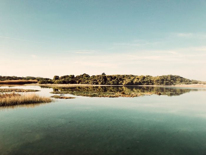 Vila Praia de Âncora, 2019 Msantiagodantas Water Sky Tranquility Scenics - Nature Beauty In Nature Tranquil Scene Plant Reflection Lake Nature Outdoors Day Non-urban Scene First Eyeem Photo