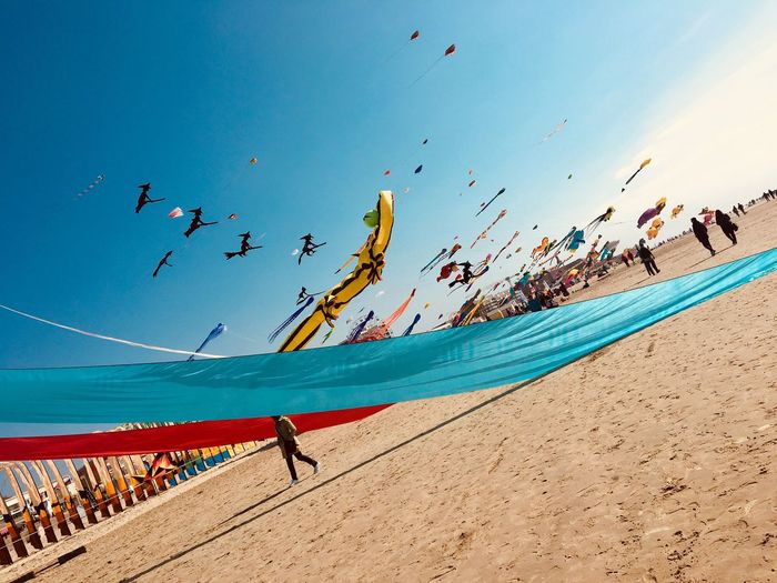Kites flying over beach against blue sky