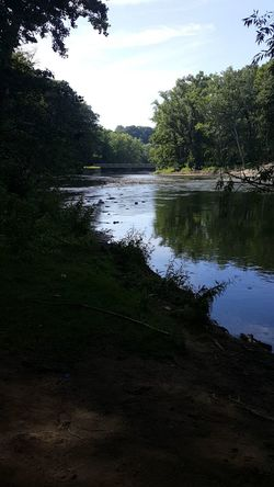 Reflection Tree Sky Nature Outdoors Tranquility No People Beauty In Nature Day Jrosemarieb Life Is Good Photography 2017 Cleveland Beautiful Tree Leaves Outdoor Photography Summer River Rocky River Reservation Valley Nature Beauty In Nature Outside