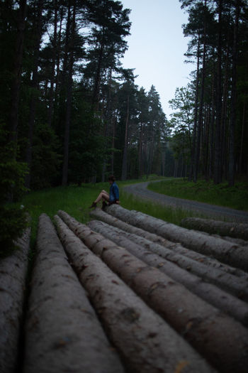 Man cycling on road amidst trees in forest