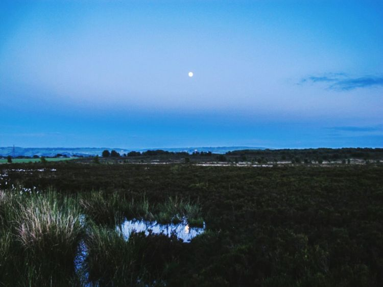 The OO Mission Blue Sky Full Moon Moon Moonlight Tranquility Taking Photos Moors Tranquil Scene 43 Golden Moments Moorland Windy Moor Yorkshire Nature Photography Landscapes Landscape POV Puddleography Water Norland Moor Reflection Reflections Reflections In The Water Moon Reflection Puddle Reflections