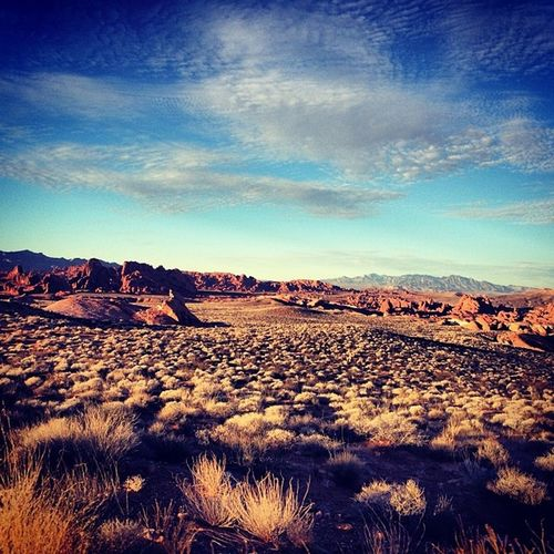 Hiking for New Years Valleyoffire Theothersideofvegas NaturesBest