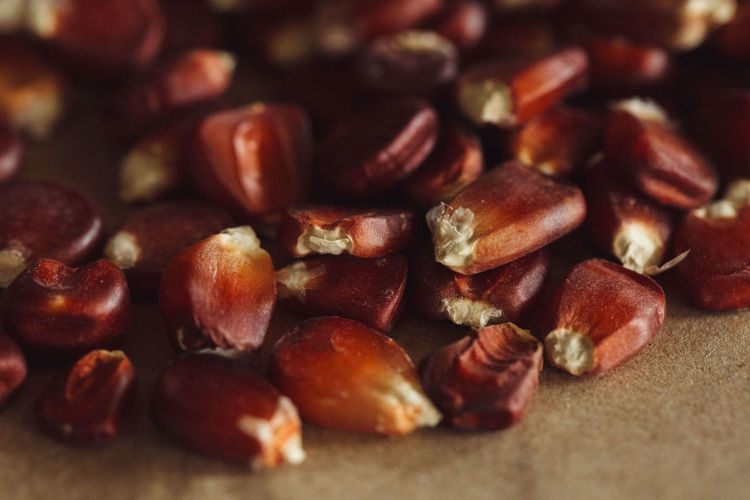 Maiz Mexico Nature Seeds Vegetarian Food Healthy Eating Macro Permaculture Roots