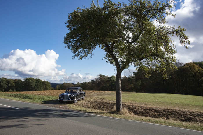 "Mit unserem ""neuen"" Mercedes Benz 220 S (W180) im Oktober in der Pfalz. Cloud - Sky Landscape No People Outdoors Road Single Tree Transportation Tree First Eyeem Photo"