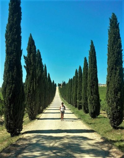 Adult Adults Only Clear Sky Day Full Length One Person One Woman Only Only Women Outdoors People Road The Way Forward Tree
