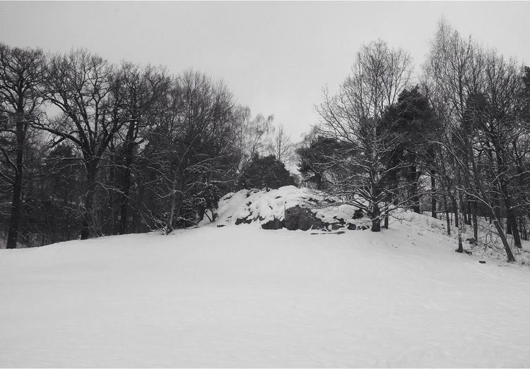 Blackandwhite Landscape Winter Eye4photography