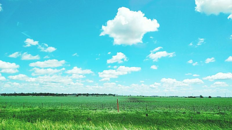 Summer Grass Sky Clouds And Sky The Great Outdoors - 2016 EyeEm Awards