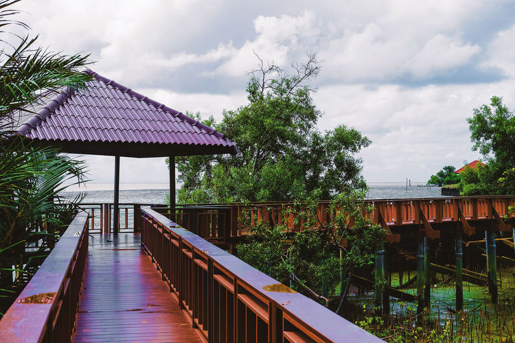 Pavilion with mangrove forest Mangrove Forest Architecture Bridge Building Building Exterior Built Structure Cloud - Sky Connection Day Ever Green Gazebo House Nature Outdoors Pavilion Plant Railing Roof Sky Tree Walkway Water Wood - Material