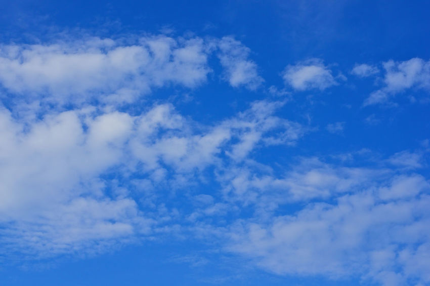 Beautiful white cloud on the blue sky as a background. Atmosphere Beautiful Cloud Heaven High Peace Scenic Weather Air Background Blue Climate Cloudscape Cumulus Day Daylight Meteorology Moisture Nature Nebulosity Outdoor Season  Sky Tranquility White