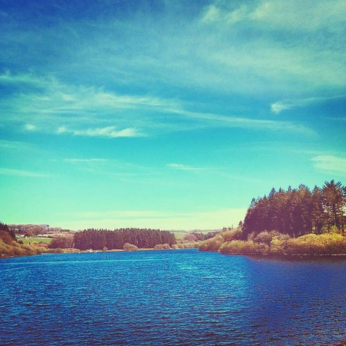 """The Reservoir Again"" Westlandpound Reservoir Devon Springtime Spring Sunnyday Shotoftheday Scenic Scenery Shotoftheday"