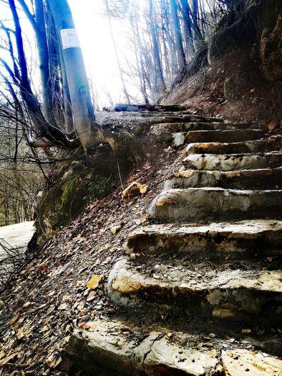 nature Steps StepByStep 👣👣 Sehovi Banjaluka Nature Nature Photography Morning Sky