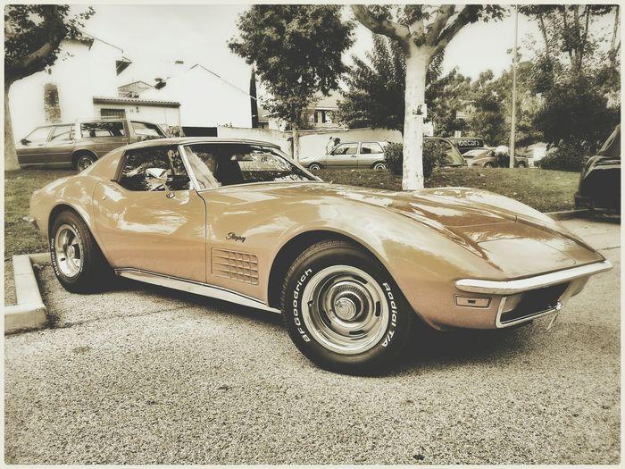 Stingray ... Chevrolet Chevy Car Vintage Cars