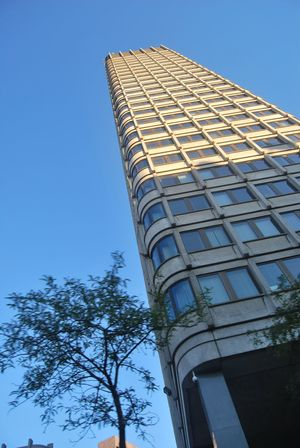 Architecture Blue Boston City  Boston, Massachusetts Building Building Exterior Built Structure City Clear Sky Low Angle View Modern Office Building Sky Sunny Tall Tall - High Tower Tree