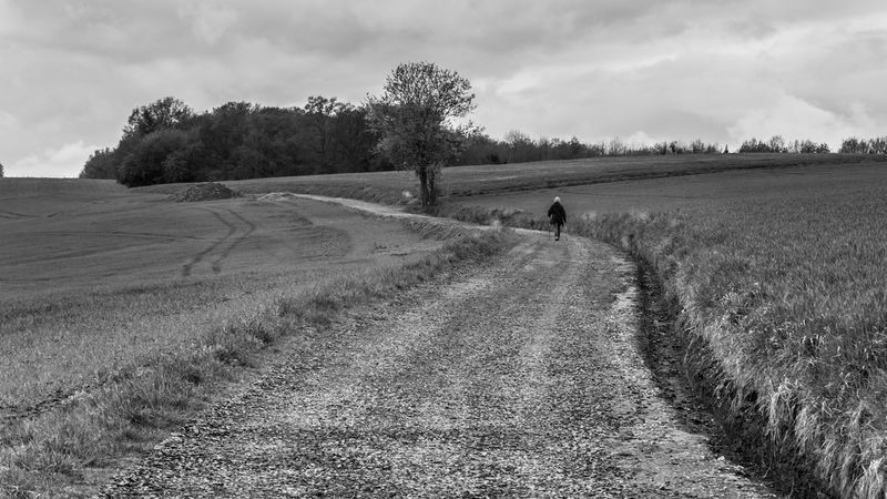 Agricultural Land Agriculture Beauty In Nature Blackandwhite Blackandwhite Photography Cloud - Sky Day Field Fields Grass Growth Hiking Landscape Nature One Person Outdoors Path Real People Road Rural Scene Scenics Sky Tranquility Tree Trees