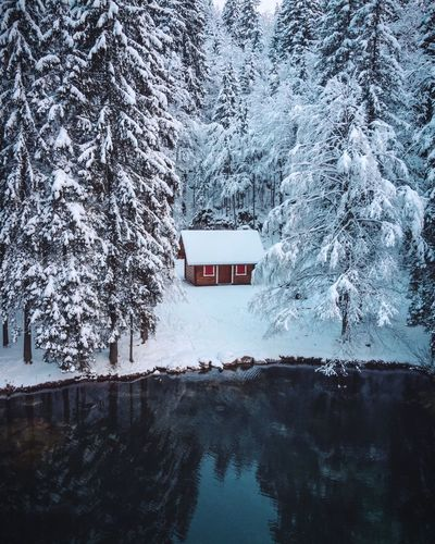 Cabingoals Snow Winter Cold Temperature Tree Plant Built Structure Nature No People Frozen Building Exterior Mode Of Transportation Transportation Land Vehicle Outdoors Architecture Scenics - Nature Covering Window Extreme Weather Day