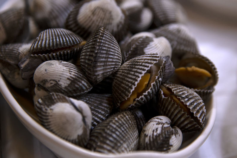 Close-up of shells in basket