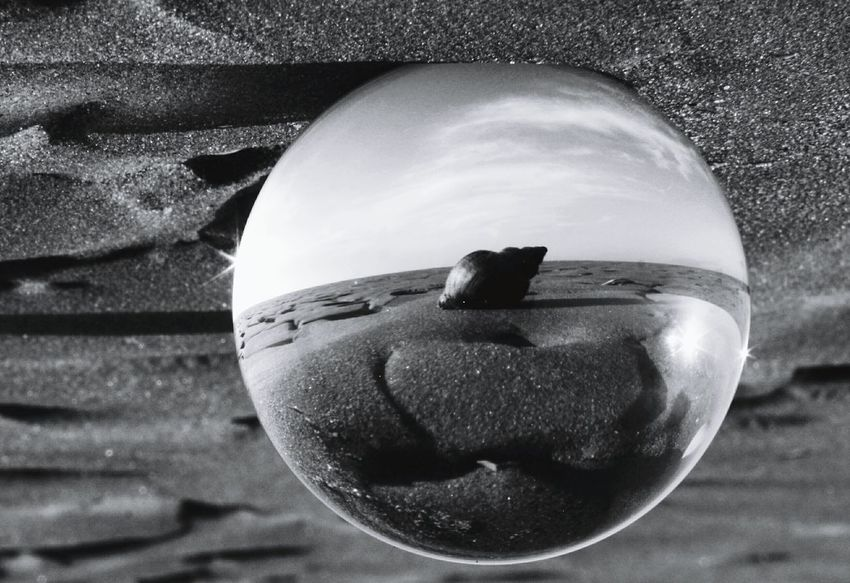 Shell in a glass ball Glass Ball Lens Ball Shell Black And White Beach Seadide Illusion Tranquil No People Close-up Day Freshness