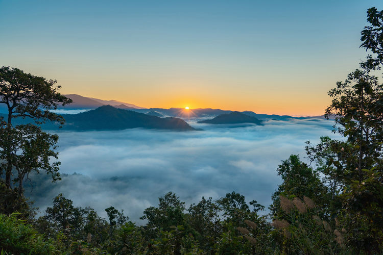 Sunrise in the morning with fog and mountain, Chiang mai, Thailand Tree Forest Peak Sky Beauty In Nature Scenics - Nature Tranquil Scene Plant Tranquility Mountain Non-urban Scene Nature Cloud - Sky No People Sunset Idyllic Growth Outdoors Environment Remote Mountain Range Chiang Mai | Thailand Thailand Landsape Sunrise
