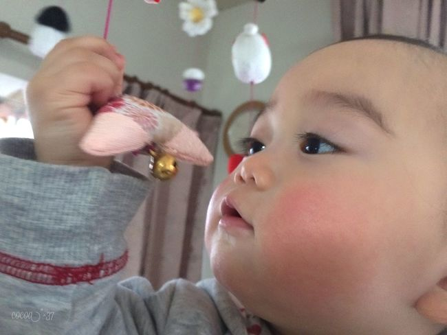 Asian Culture 桃の節句 ひなまつり 雛祭り Doll Festival Color Portrait Japan Spring Cute Baby