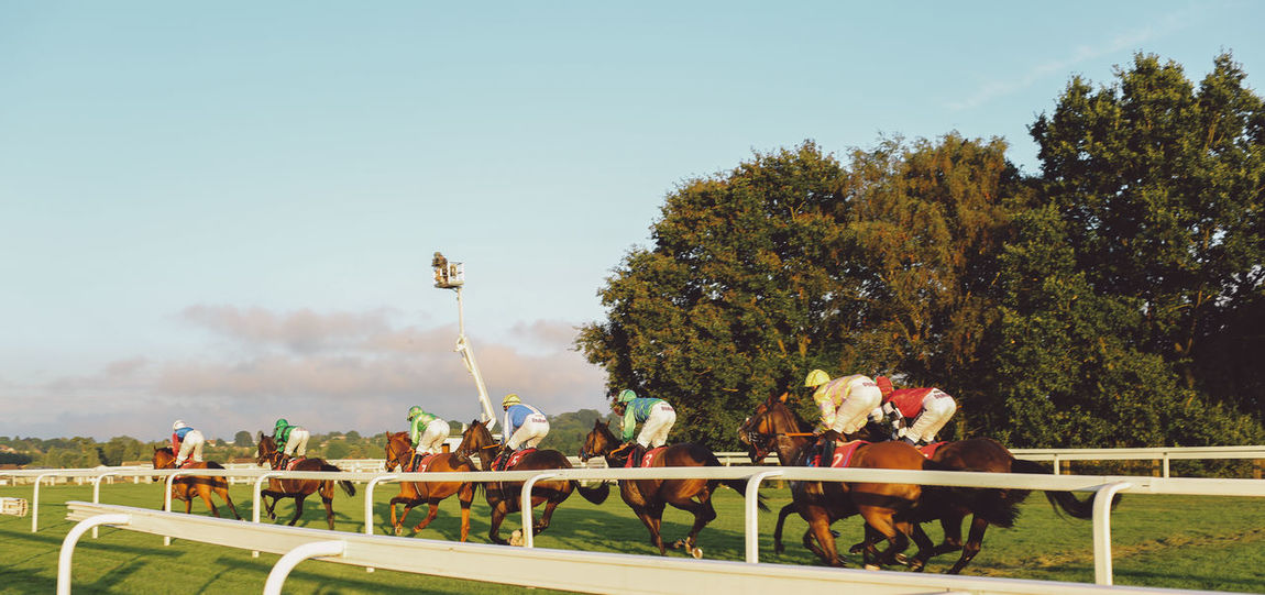 Clear Sky Day Epsom Downs Racecourse Event Gate Horse Race Horse Riding Jockey Jockeys Large Group Of People Men Outdoors Person Race Course Race Track Racecourse Racetrack Railing Riding Riverbank Start Summer Sunny Tree Walking