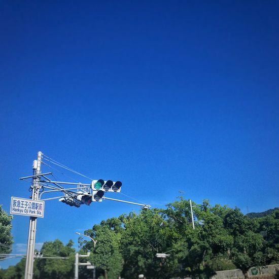dry breeze Summertime Blue