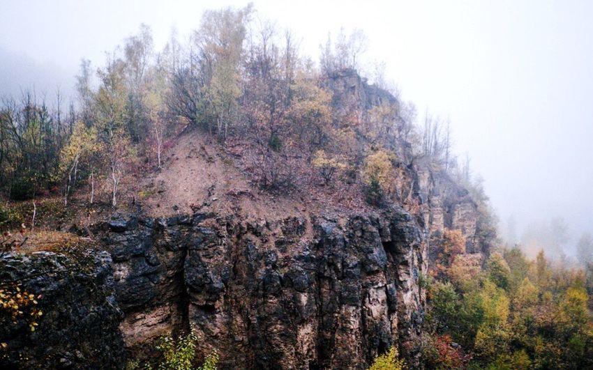 Wandern im Deister Lost In The Landscape