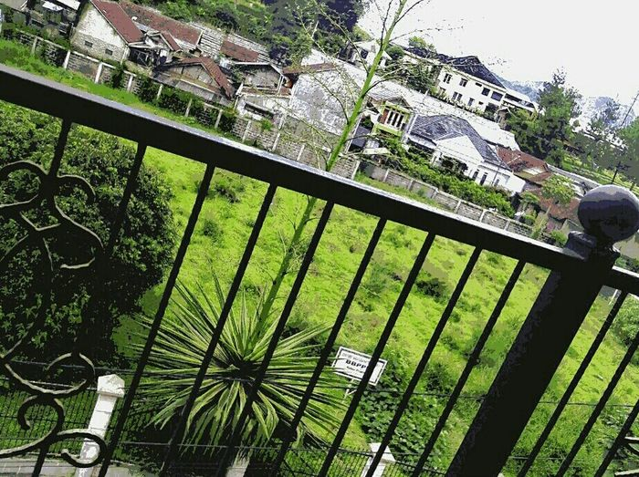 On a balcony of summer air... VillaTeratai Lembang Bandungbarat