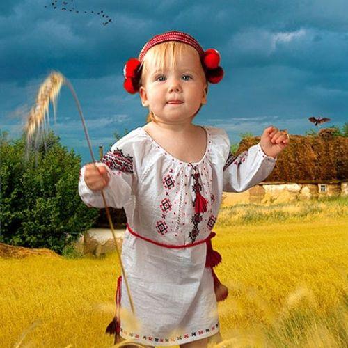 украина поле вышиванка девочка колосок украинка Ukraine