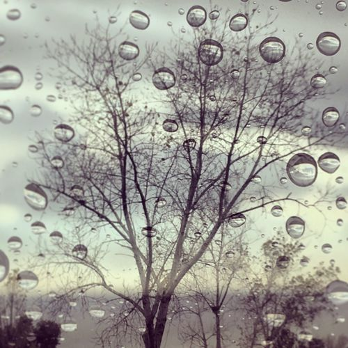 Drop Wet Window