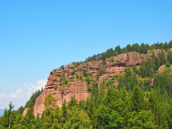 Red Rock Rock