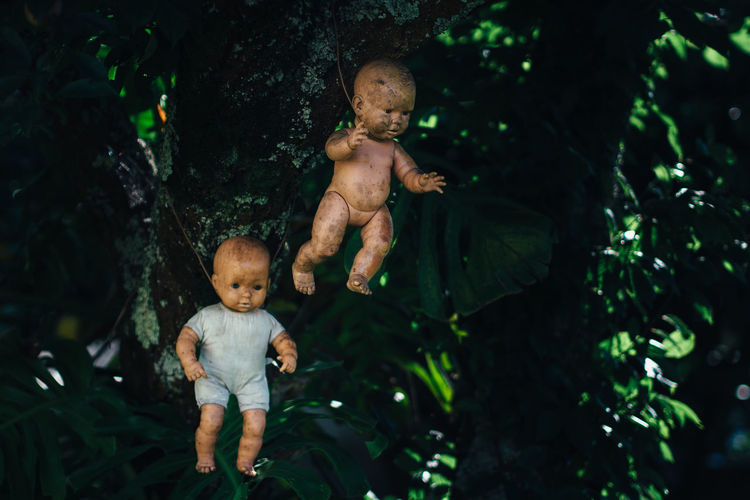 Kindergarten Close-up Day Dolls Garden Green Color Growth Hikinggalicia Leaf Morbid Outdoors Plant Puppet Tree