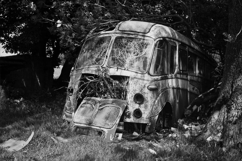 Abandoned Rural Scene Farm Life Farmland Farm England Derbyshire Countryside No People Day Grass Field Outdoors Nature Beauty In Nature Peace And Quiet trees Bus old bus Vintage Vintage Bus Creepy Gothic Strange Blackandwhite Olympus Trip 35