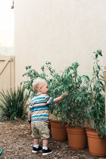 Full length of boy standing in potted plant in yard