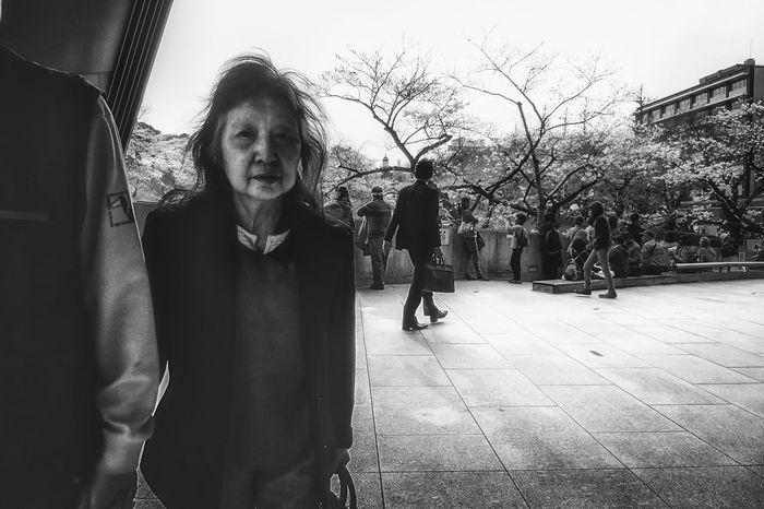Sakura The Week Of Eyeem Japan Streetphoto Tokyo Streetphotography People Blackandwhite Black And White Street Photography Streetphoto_bw Streetphotography_bw B&w Street Photography Monochrome Photography Voidtokyo Welcome To Black