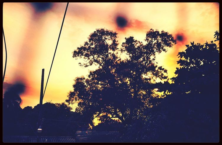 Desde mi ventana! Sunset_collection Landscape EyeEm Nature Lover Nature