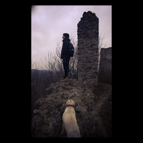 Dog LabradorRetriever Trip Staryjicin castle ruins chill clouds @theorsy
