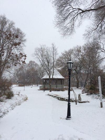 Garden - Winter Gazebo At The Park IPSWeather Snow Weather Winter