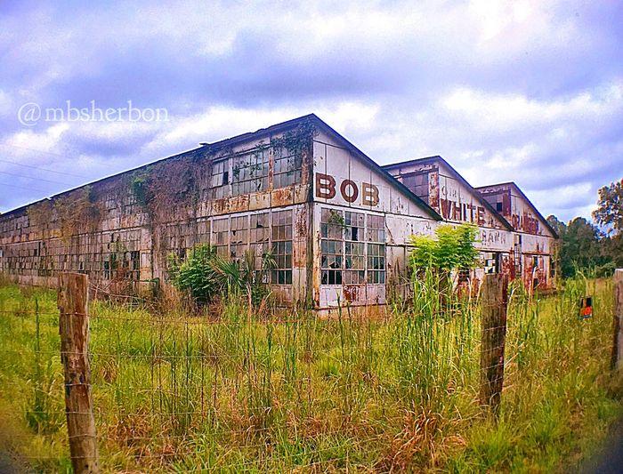 Abandoned Abandoned Places Eye4photography  Florida Rust Forgotten Explore Warehouse EyeEm Nature Lover Architecture