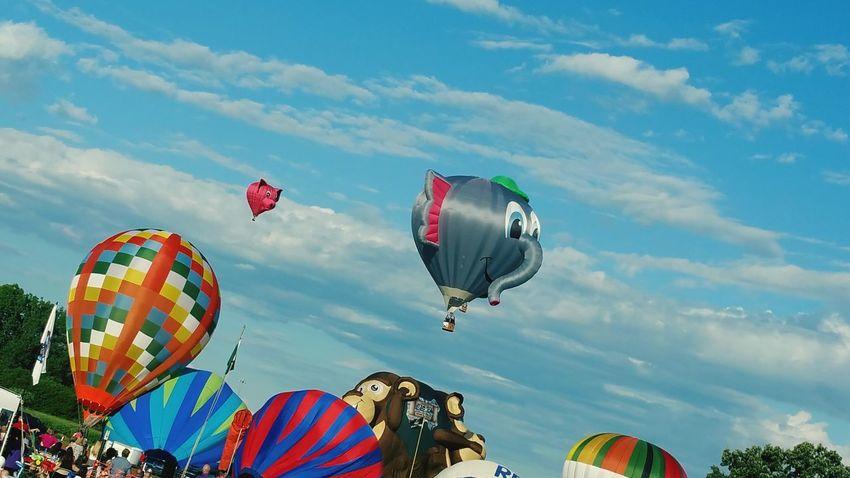 Summer2015 Hotairballoons