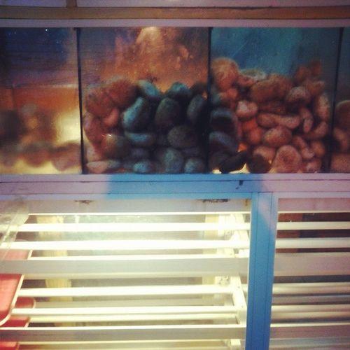 Getting some bread... Freshlybaked Hot PANDESAL Pinoybread Earlymorning