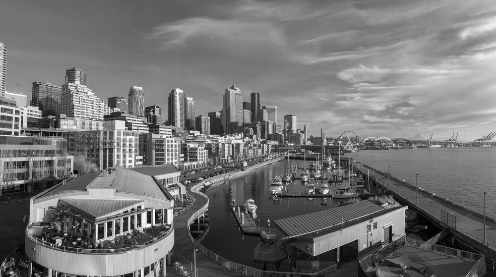 Panorama Seattle waterfront at mid day aerial view with distant mount Rainier in black and white. Elliott Bay Growth Marina Seattle View Architecture Building Exterior Built Structure City Cityscape Cloud - Sky Condominium Day Housing Modern No People Outdoors Panorma Population Real Estate Sky Skyscraper Urban Skyline Water Waterfront